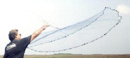 Image of person casting a net.