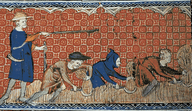 Numerous droughts have hit European agriculture over the ages, but their overall extent has been known mainly from scattered historical documents. Here, an English calendar page, circa 1310, shows men harvesting wheat. (Queen Mary's Psalter, Wikimedia commons)