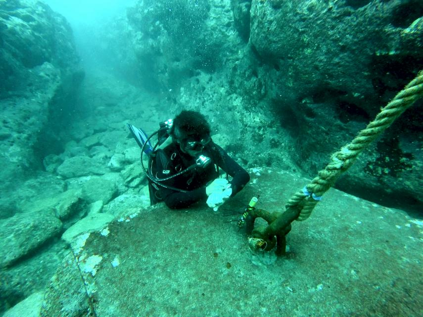 A scientist places pressure transducers in the inner lagoon of Temae, Moorea. (Photo: V. Parravicini)
