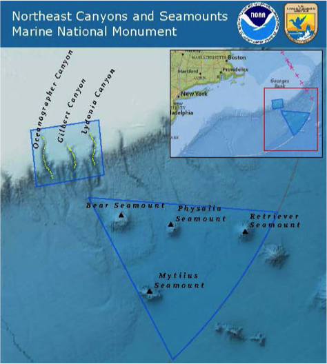 The new Northeast Canyons and Seamounts Marine National Monument. Image: NOAA