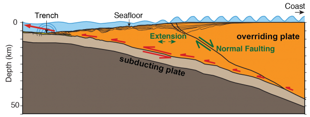 A tsunami can occur as ocean crust (brown area) dives under continental crust (orange), causing the ocean floor to suddenly move. In a region off Alaska, researchers have found a large fault and other evidence indicating that the leading edge of the continental crust has split off, creating a tsunami-prone area where the floor can move more efficiently. (Anne Becel)