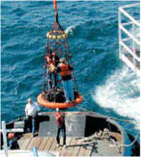 Image of at-sea transfer of personnel.