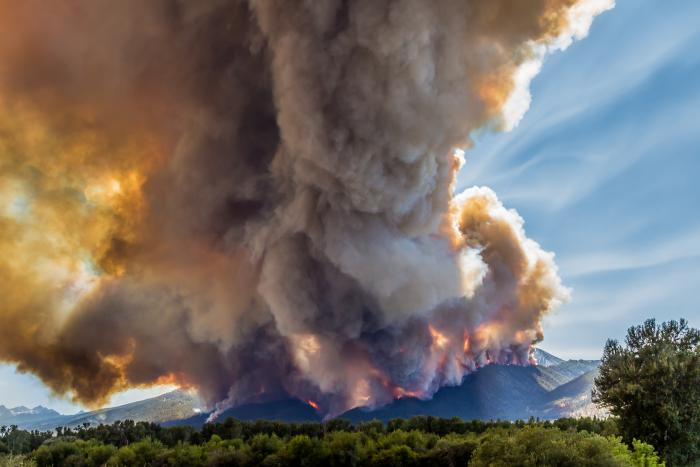 In July and August, the Roaring Lion fire devoured more than 8,000 acres of forest, along with over 60 homes and outbuildings in eastern Montana's Bitterroot Range. Here, the fire burns through dense conifers, July 31, 2016. (Courtesy Mike Daniels)