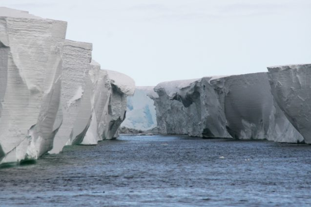 The Ross Ice Shelf. Photo: lin padgham via Flickr