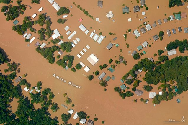 Flooding this week near Port Vincent, Louisiana. Photo: NASA<br />