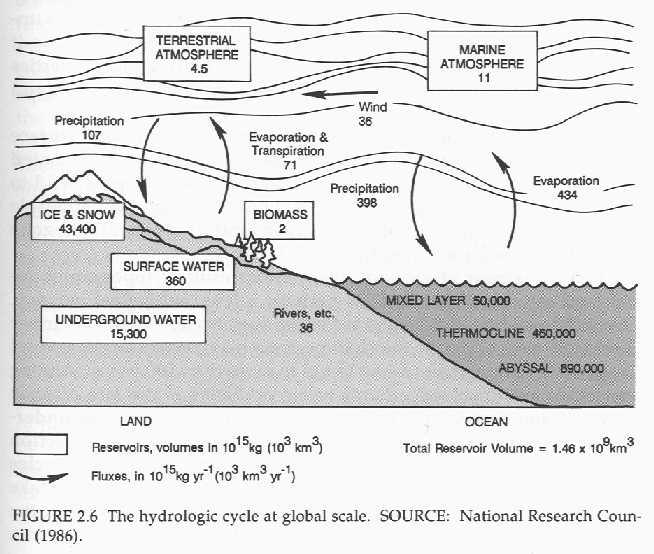 Watershed diagram blank